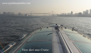 hotaluna cruise odaiba asakusa