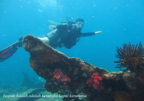 diving9