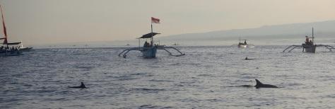 lovina beach buleleng dolphin jukung