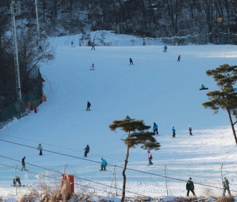 ski south korea seoul winter