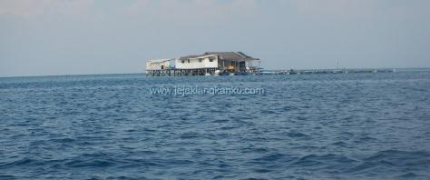wisata pulau seribu snorkeling diving