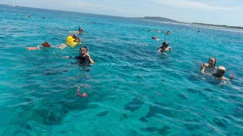 snorkeling gili trawangan 2-1