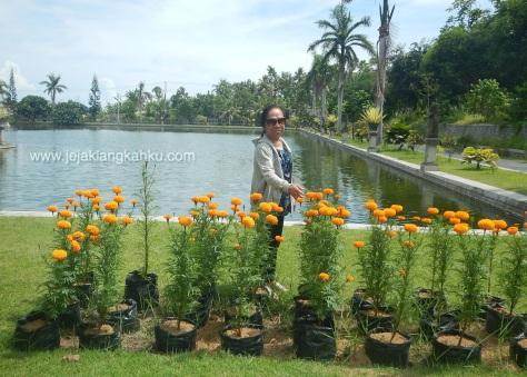 wisata water palace taman sukasada