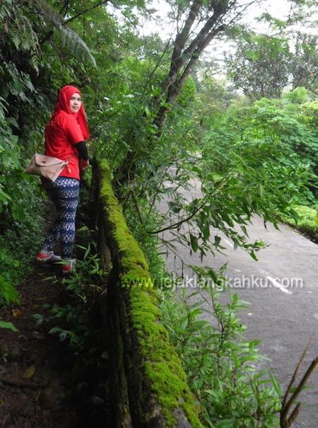 trekking taman safari puncak 7-1