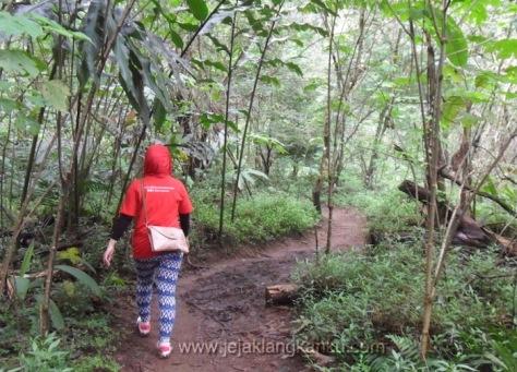 trekking taman safari puncak 8-1