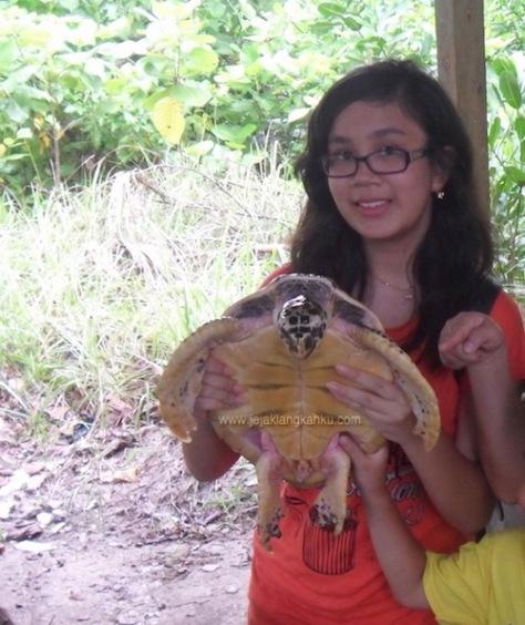 pulau kepayang belitung 6