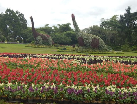 taman bunga nusantara 3